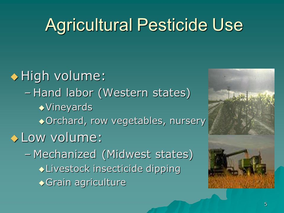 5 Agricultural Pesticide Use  High volume: –Hand labor (Western states)  Vineyards  Orchard, row vegetables, nursery  Low volume: –Mechanized (Midwest states)  Livestock insecticide dipping  Grain agriculture