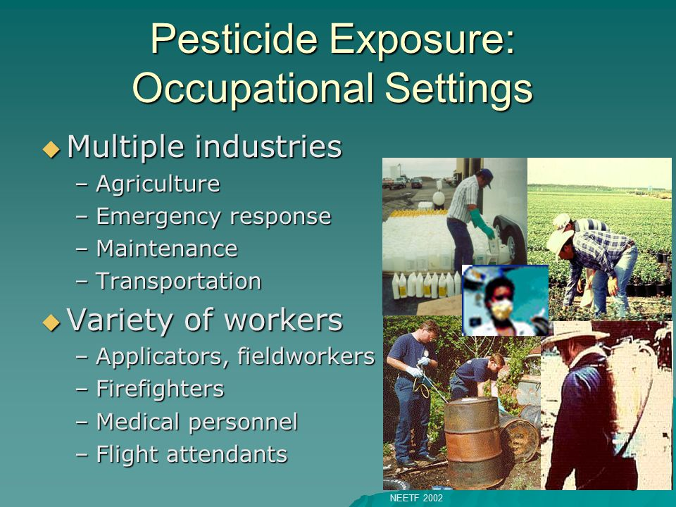 6 Pesticide Exposure: Occupational Settings  Multiple industries –Agriculture –Emergency response –Maintenance –Transportation  Variety of workers –Applicators, fieldworkers –Firefighters –Medical personnel –Flight attendants NEETF 2002