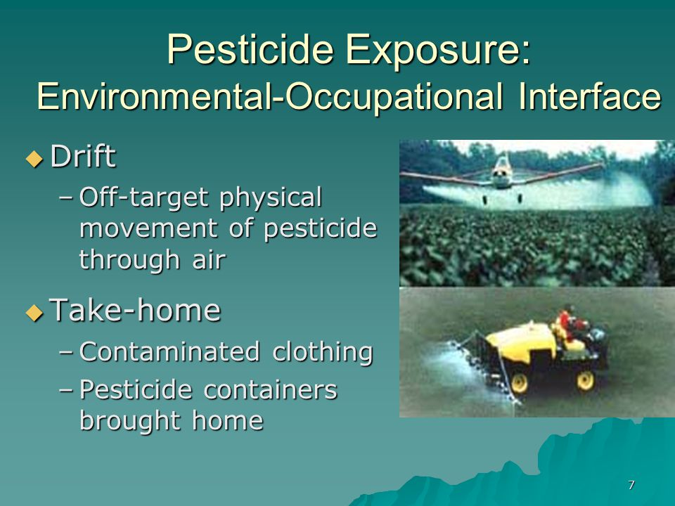 7 Pesticide Exposure: Environmental-Occupational Interface  Drift –Off-target physical movement of pesticide through air  Take-home –Contaminated clothing –Pesticide containers brought home