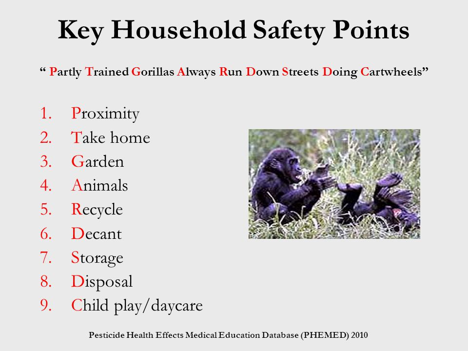 Key Household Safety Points 1.Proximity 2.Take home 3.Garden 4.Animals 5.Recycle 6.Decant 7.Storage 8.Disposal 9.Child play/daycare Partly Trained Gorillas Always Run Down Streets Doing Cartwheels