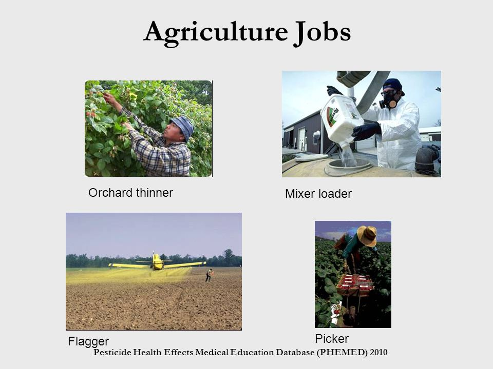 Pesticide Health Effects Medical Education Database (PHEMED) 2010 Agriculture Jobs Orchard thinner Mixer loader Flagger Picker
