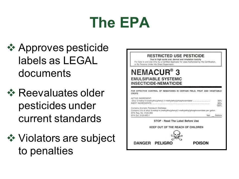 Pesticide Classification  General Use (or unclassified use):  normally lower toxicity  no special licenses or permits required  Restricted Use (RUP):  may cause adverse effects to human health or the environment  must be stated on the federal label  sold only to certified applicators  applied only by certified applicators or employees under their direct supervision