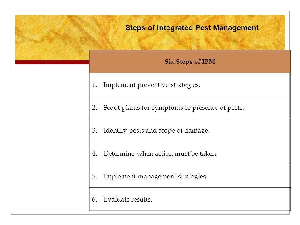 Six Steps of IPM 1.Implement preventive strategies. 2. Scout plants for symptoms or presence of pests. 3. Identify pests and scope of damage. 4. Deter
