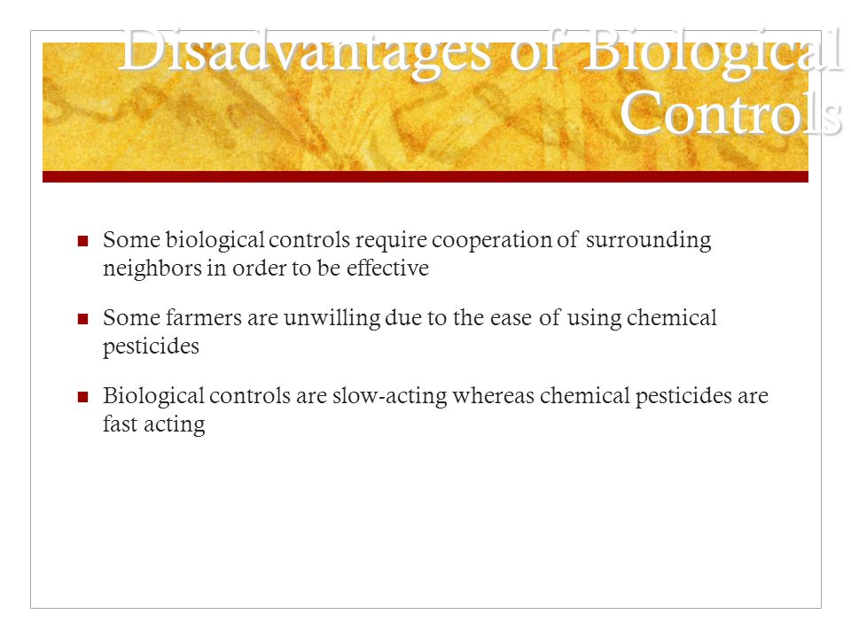 Disadvantages of Biological Controls Some biological controls require cooperation of surrounding neighbors in order to be effective Some farmers are u