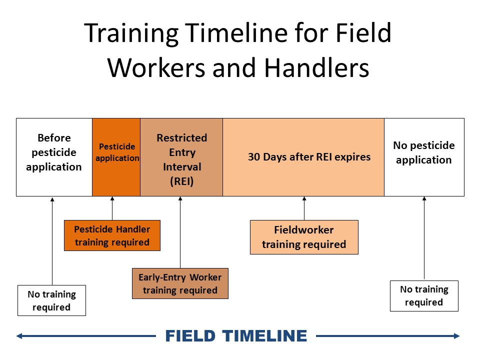 30 Days after REI expires Pesticide Handler training required Early-Entry Worker training required No training required FIELD TIMELINE Training Timeline for Field Workers and Handlers Restricted Entry Interval (REI) No pesticide application Pesticide application No training required Fieldworker training required Before pesticide application
