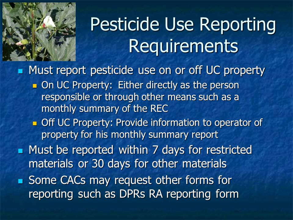 Pesticide Use Reporting Requirements Must report pesticide use on or off UC property Must report pesticide use on or off UC property On UC Property: Either directly as the person responsible or through other means such as a monthly summary of the REC On UC Property: Either directly as the person responsible or through other means such as a monthly summary of the REC Off UC Property: Provide information to operator of property for his monthly summary report Off UC Property: Provide information to operator of property for his monthly summary report Must be reported within 7 days for restricted materials or 30 days for other materials Must be reported within 7 days for restricted materials or 30 days for other materials Some CACs may request other forms for reporting such as DPRs RA reporting form Some CACs may request other forms for reporting such as DPRs RA reporting form