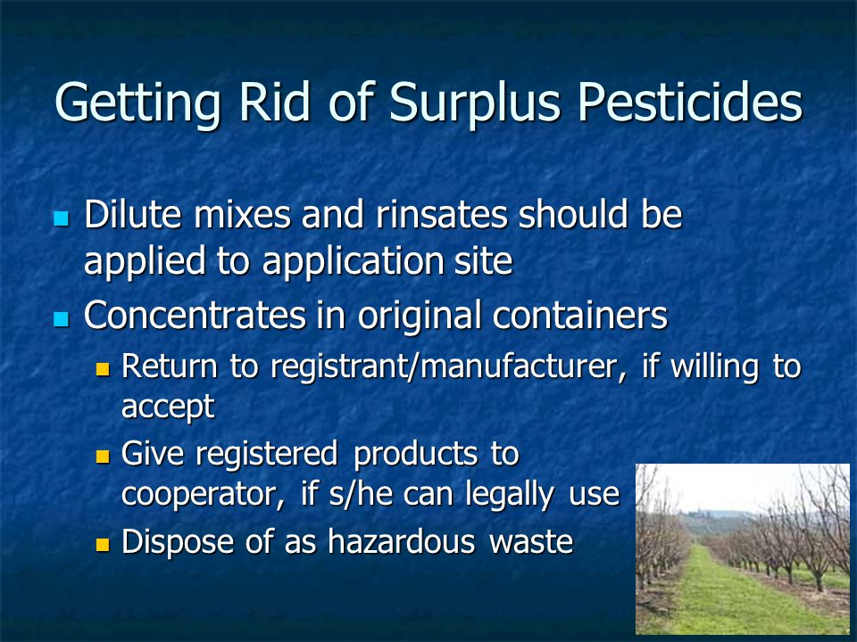 Getting Rid of Surplus Pesticides Dilute mixes and rinsates should be applied to application site Dilute mixes and rinsates should be applied to application site Concentrates in original containers Concentrates in original containers Return to registrant/manufacturer, if willing to accept Return to registrant/manufacturer, if willing to accept Give registered products to Give registered products to cooperator, if s/he can legally use Dispose of as hazardous waste Dispose of as hazardous waste