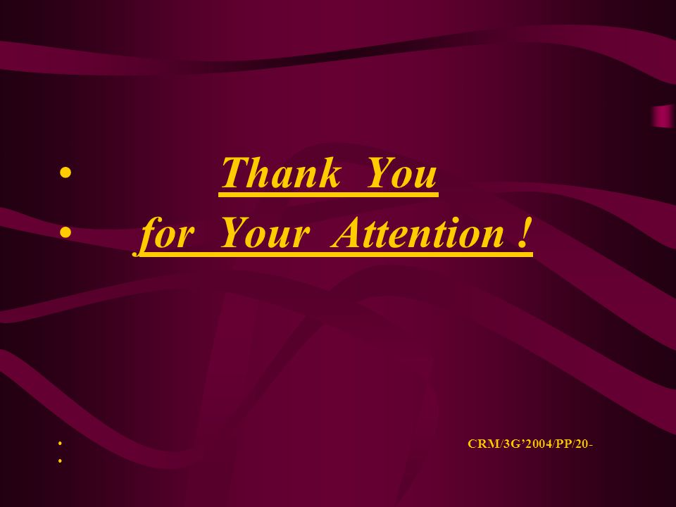 Thank You for Your Attention ! CRM/3G'2004/PP/20-