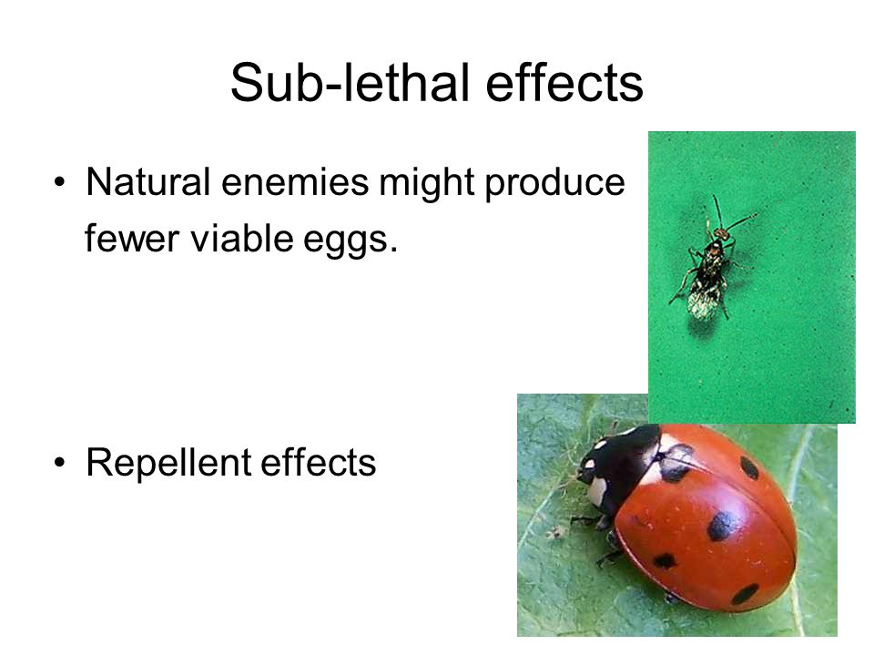 Sub-lethal effects Natural enemies might produce fewer viable eggs. Repellent effects