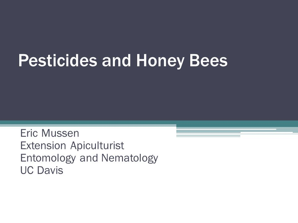 Pesticides and Honey Bees Eric Mussen Extension Apiculturist Entomology and Nematology UC Davis