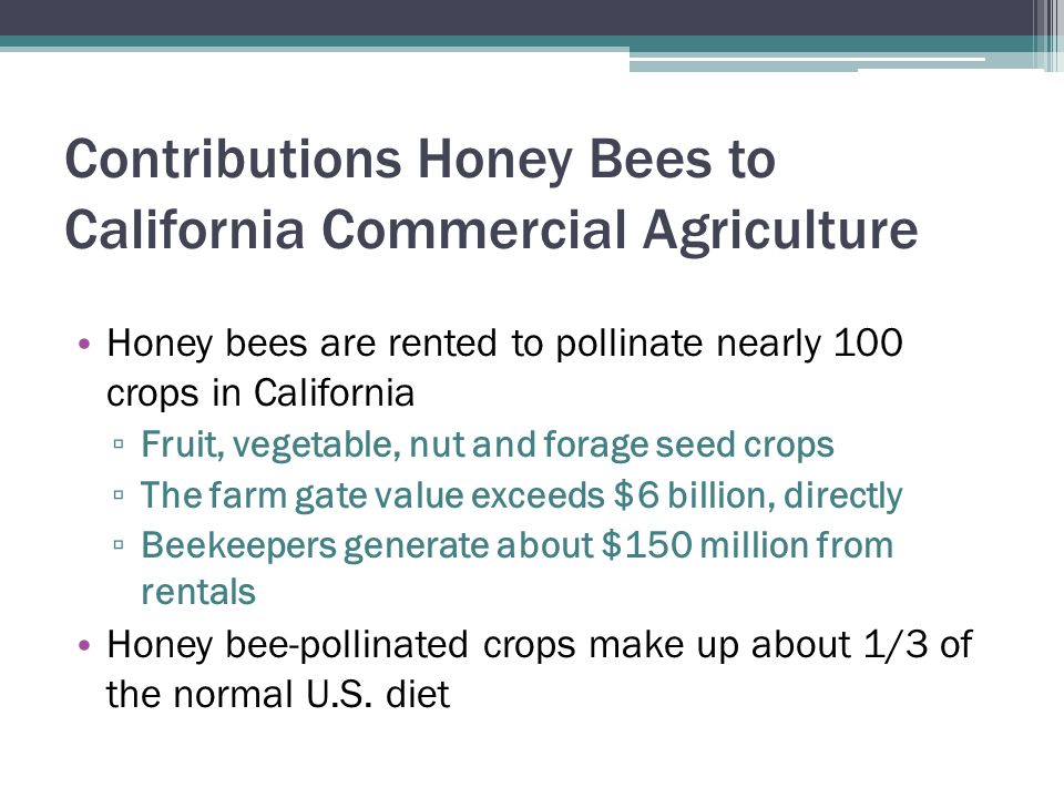 Contributions Honey Bees to California Commercial Agriculture Honey bees are rented to pollinate nearly 100 crops in California ▫ Fruit, vegetable, nu
