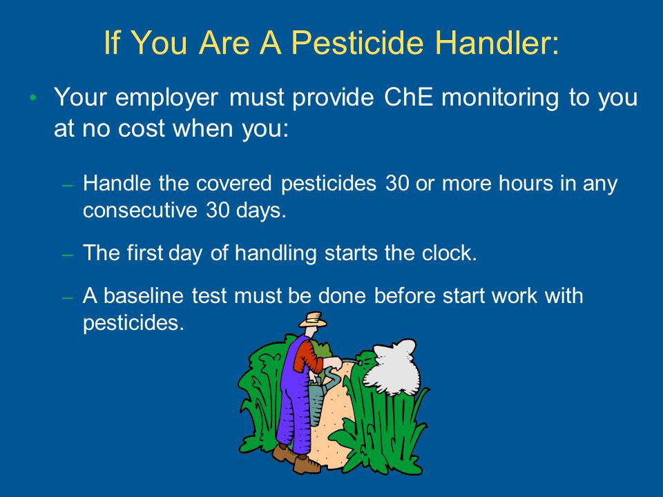 If You Are A Pesticide Handler: Your employer must provide ChE monitoring to you at no cost when you: – Handle the covered pesticides 30 or more hours in any consecutive 30 days.