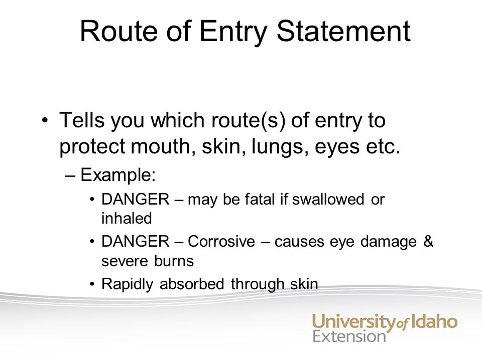Route of Entry Statement Tells you which route(s) of entry to protect mouth, skin, lungs, eyes etc.
