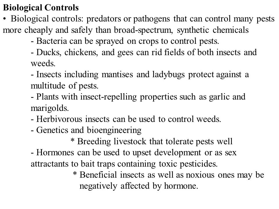Biological Controls Biological controls: predators or pathogens that can control many pests more cheaply and safely than broad-spectrum, synthetic chemicals - Bacteria can be sprayed on crops to control pests.