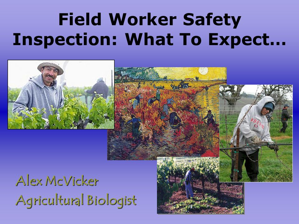 Field Worker Safety Inspection: What To Expect… Alex McVicker Agricultural Biologist