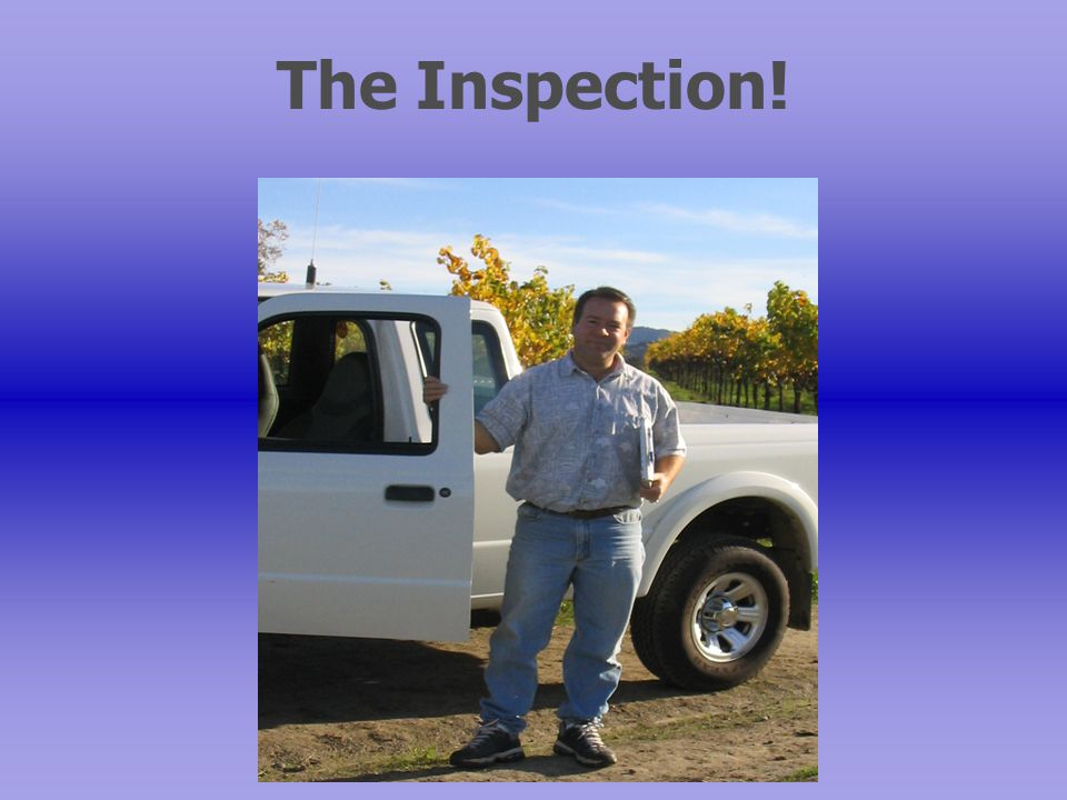 The Inspection!