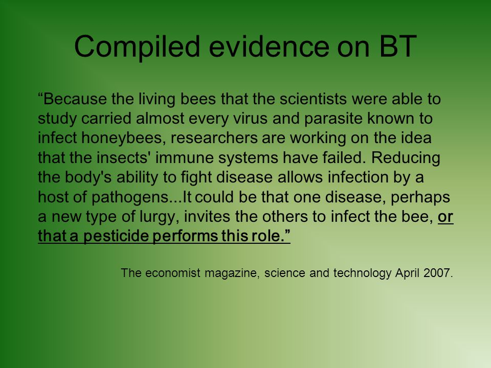Compiled evidence on BT Because the living bees that the scientists were able to study carried almost every virus and parasite known to infect honeybees, researchers are working on the idea that the insects immune systems have failed.