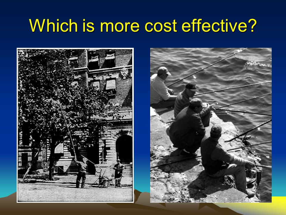Which is more cost effective?