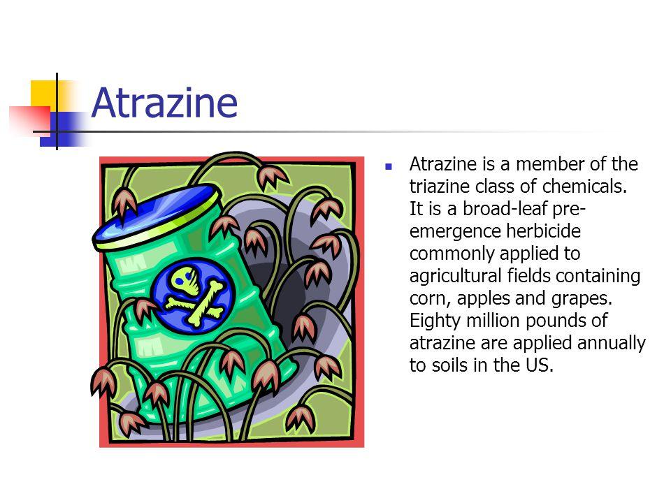 Atrazine Atrazine is a member of the triazine class of chemicals.