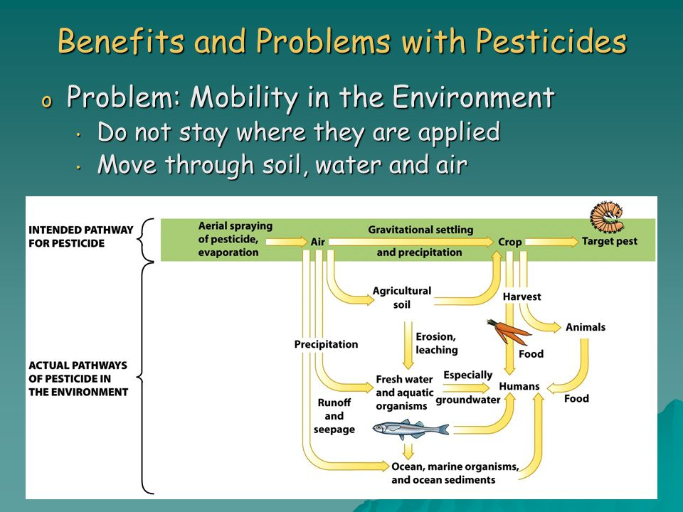 Benefits and Problems with Pesticides o Problem: Mobility in the Environment Do not stay where they are applied Do not stay where they are applied Move through soil, water and air Move through soil, water and air
