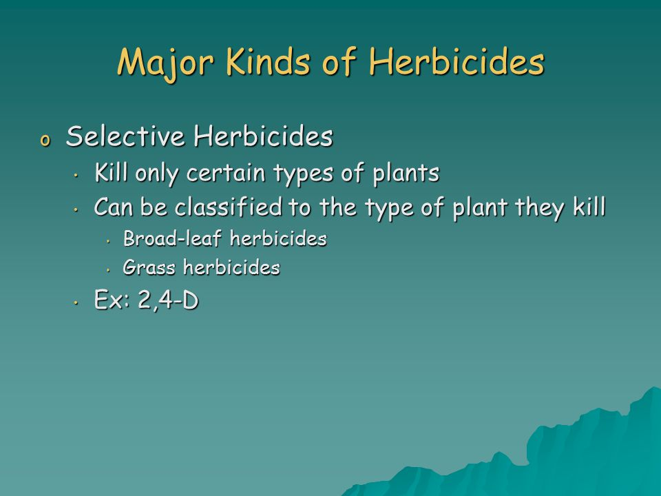 Major Kinds of Herbicides o Selective Herbicides Kill only certain types of plants Kill only certain types of plants Can be classified to the type of plant they kill Can be classified to the type of plant they kill Broad-leaf herbicides Broad-leaf herbicides Grass herbicides Grass herbicides Ex: 2,4-D Ex: 2,4-D