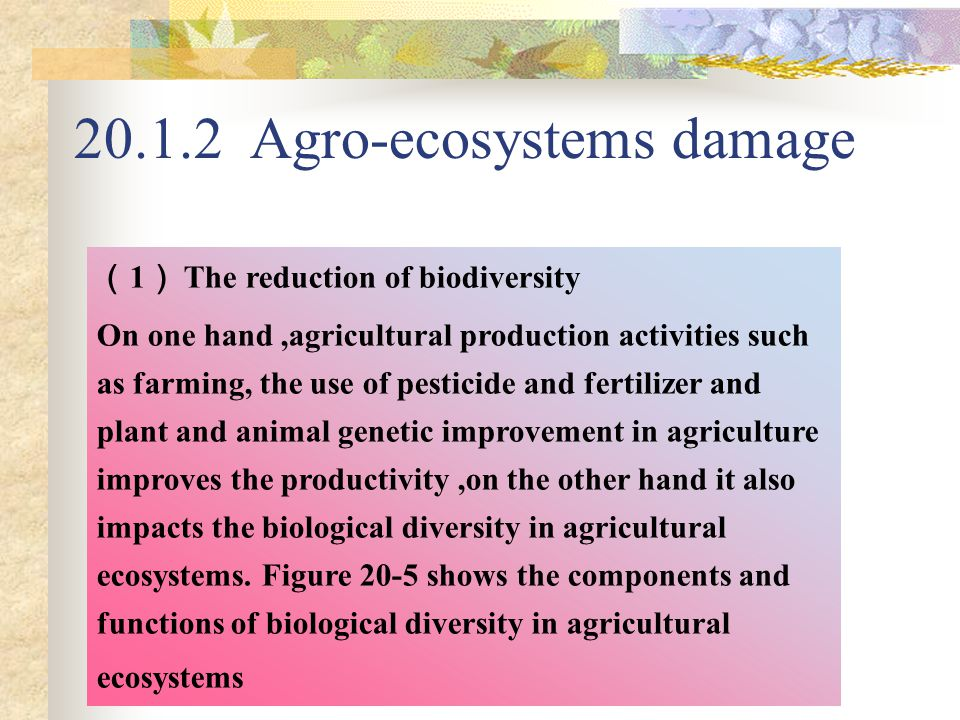 20.1.2 Agro-ecosystems damage ( 1 ) The reduction of biodiversity On one hand,agricultural production activities such as farming, the use of pesticide and fertilizer and plant and animal genetic improvement in agriculture improves the productivity,on the other hand it also impacts the biological diversity in agricultural ecosystems.