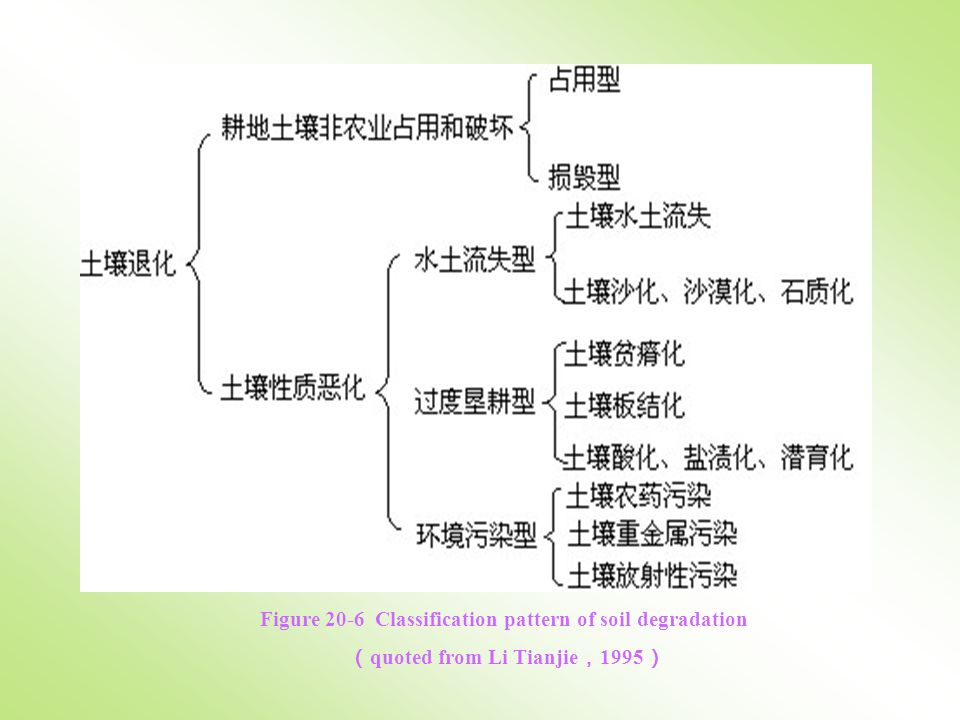 Figure 20-6 Classification pattern of soil degradation ( quoted from Li Tianjie , 1995 )