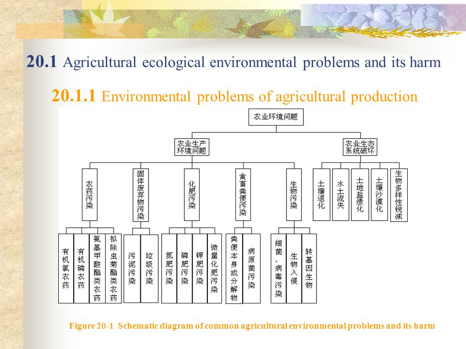 20.1 Agricultural ecological environmental problems and its harm 20.1.1 Environmental problems of agricultural production Figure 20-1 Schematic diagram of common agricultural environmental problems and its harm