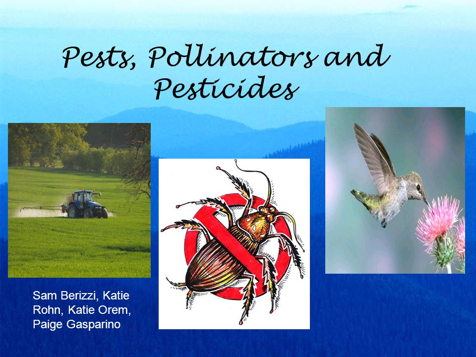 Negative and Positive Effects By their very nature, most pesticides create some risk of harm - Pesticides can cause harm to humans, animals, or the environment because they are designed to kill or otherwise adversely affect living organisms.