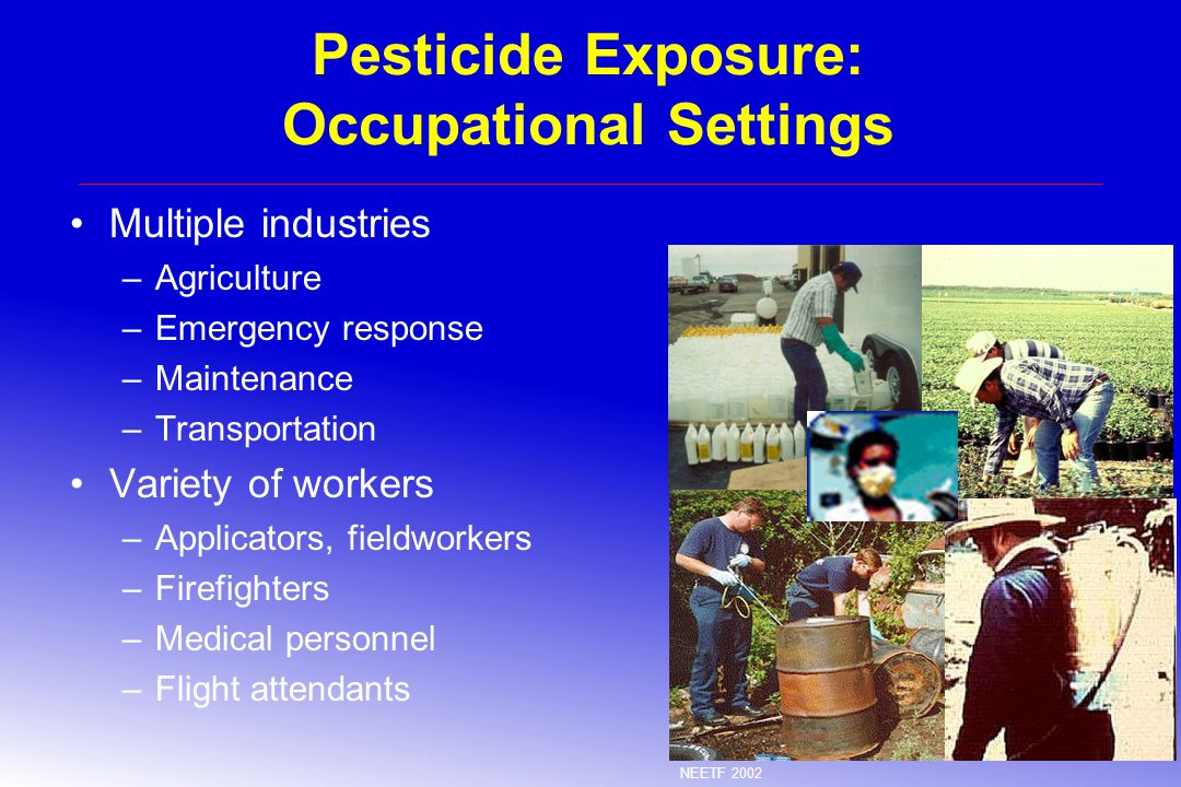 Pesticide Exposure: Occupational Settings Multiple industries –Agriculture –Emergency response –Maintenance –Transportation Variety of workers –Applicators, fieldworkers –Firefighters –Medical personnel –Flight attendants NEETF 2002