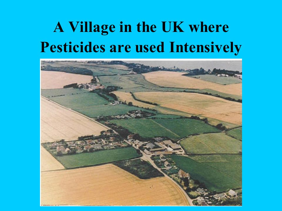 A Village in the UK where Pesticides are used Intensively