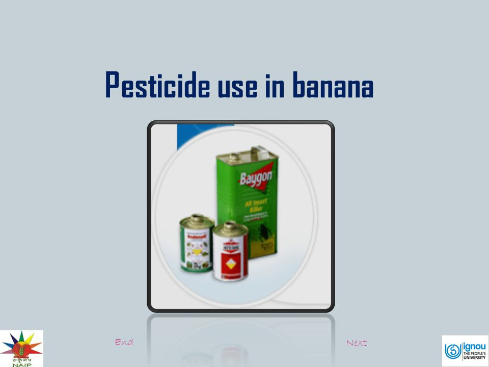 Pesticide use in banana End Next
