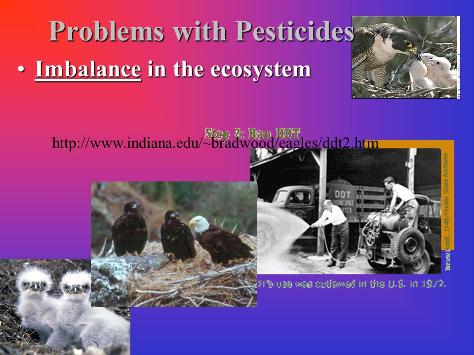 Problems with Pesticides Genetic resistance: inherited characteristics (natural selection) that decrease the effect of the pesticide on the pest.Genetic resistance: inherited characteristics (natural selection) that decrease the effect of the pesticide on the pest.