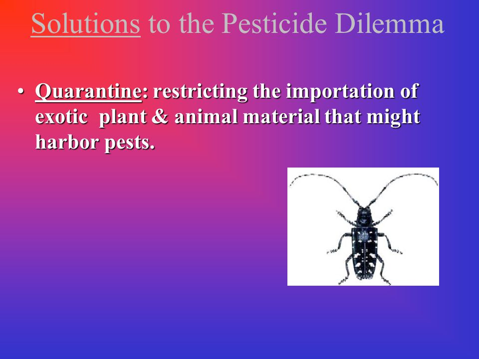 Solutions to the Pesticide Dilemma http://www.bt.ucsd.edu/crop_refuge.html Case in Point: Bt, Its Potential & Problems