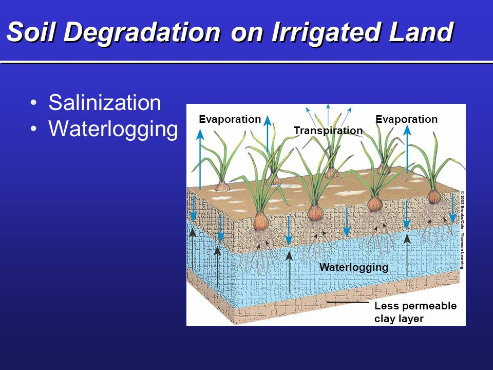 Soil Degradation on Irrigated Land Salinization Waterlogging Evaporation Transpiration Evaporation Waterlogging Less permeable clay layer