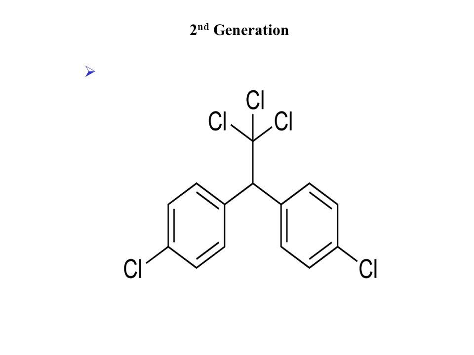 2 nd Generation 