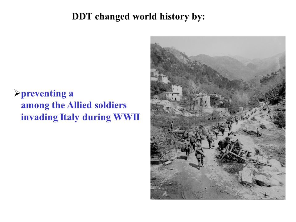 DDT changed world history by:  preventing a among the Allied soldiers invading Italy during WWII