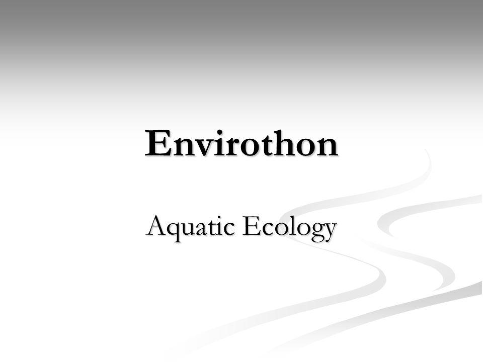 Chemical Assessment Nitrogen Cycle http://www.marietta.edu/~biol/102/ecosystem.html