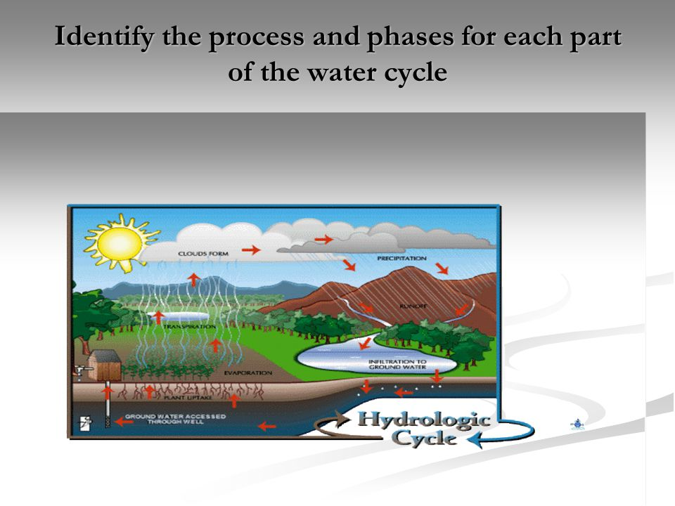 Saltwater ecosystems – important properties of water The oceans have a profound influence on climate.