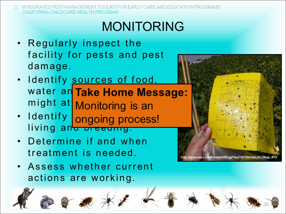INTEGRATED PEST MANAGEMENT TOOLKIT FOR EARLY CARE AND EDUCATION PROGRAMS CALIFORNIA CHILDCARE HEALTH PROGRAM MONITORING 35 Regularly inspect the facility for pests and pest damage.