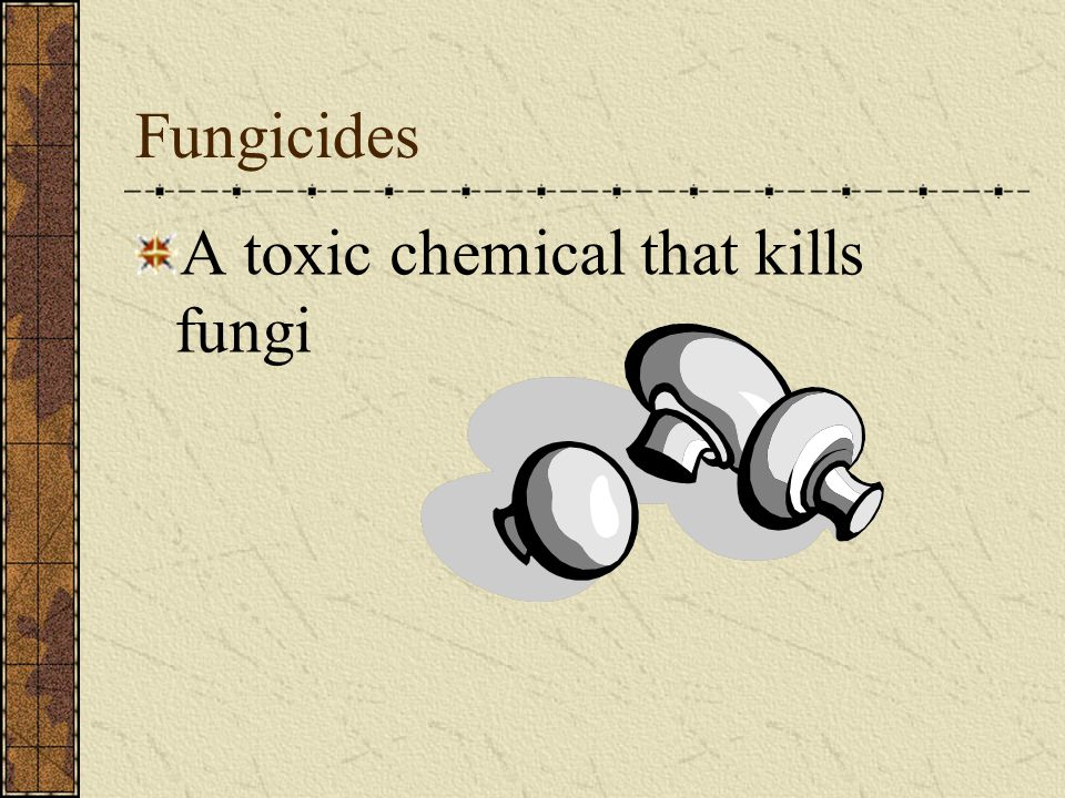 Fungicides A toxic chemical that kills fungi