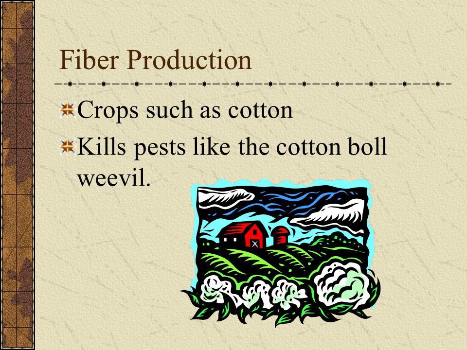 Fiber Production Crops such as cotton Kills pests like the cotton boll weevil.