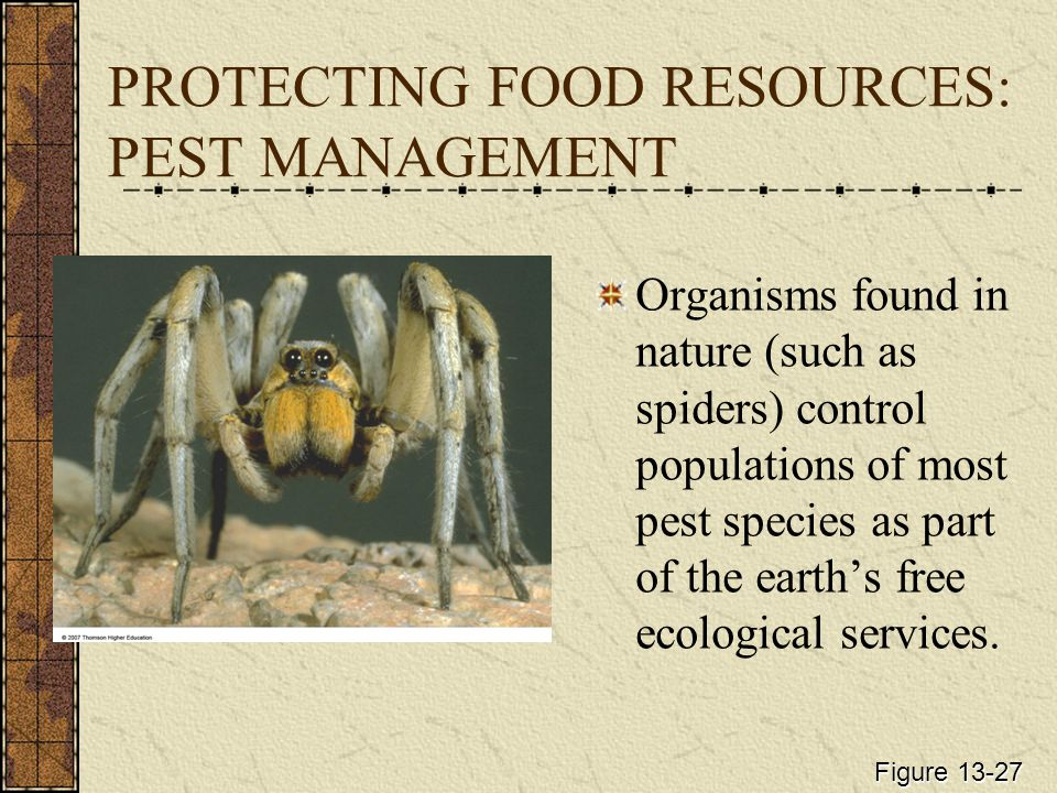 PROTECTING FOOD RESOURCES: PEST MANAGEMENT Organisms found in nature (such as spiders) control populations of most pest species as part of the earth's free ecological services.