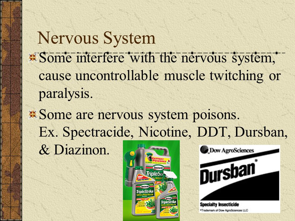 Nervous System Some interfere with the nervous system, cause uncontrollable muscle twitching or paralysis.