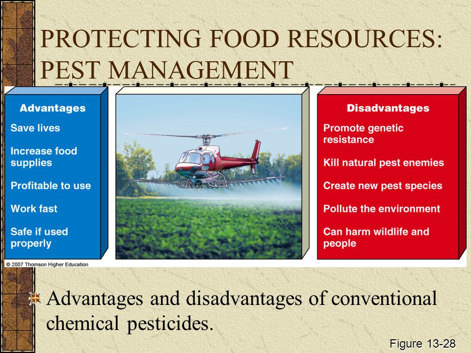 Efficiency When Compared to Alternatives Pesticides control most pests quickly and at a reasonable cost.