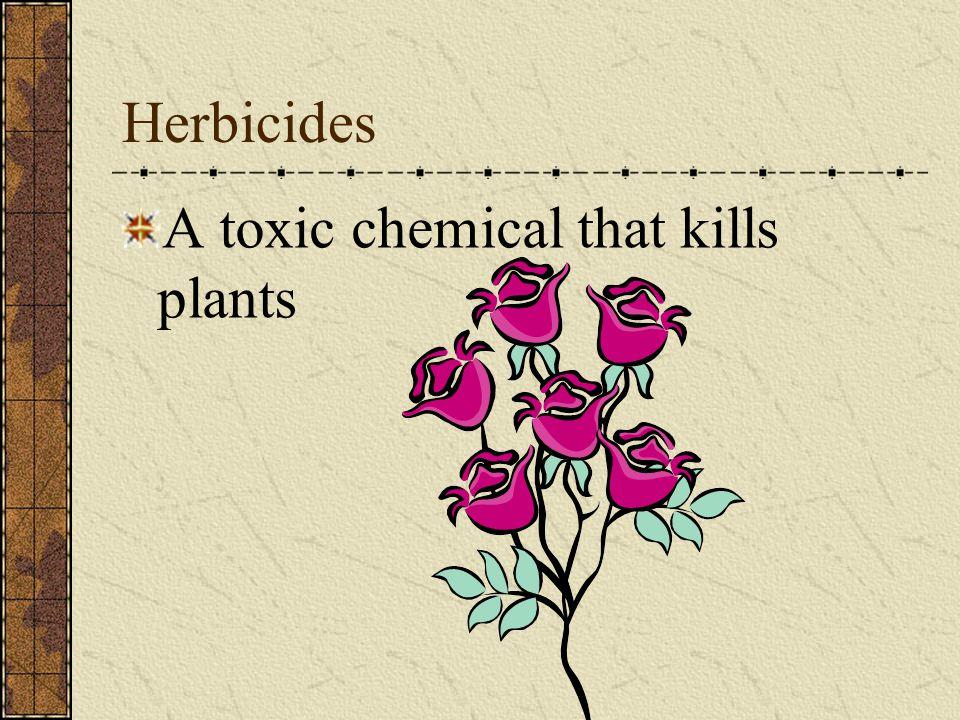 Problems Associated with Pesticide Usage
