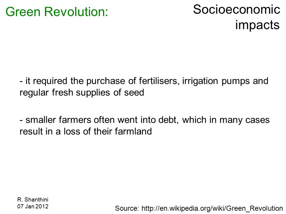 R. Shanthini 07 Jan 2012 Socioeconomic impacts - it required the purchase of fertilisers, irrigation pumps and regular fresh supplies of seed - smalle