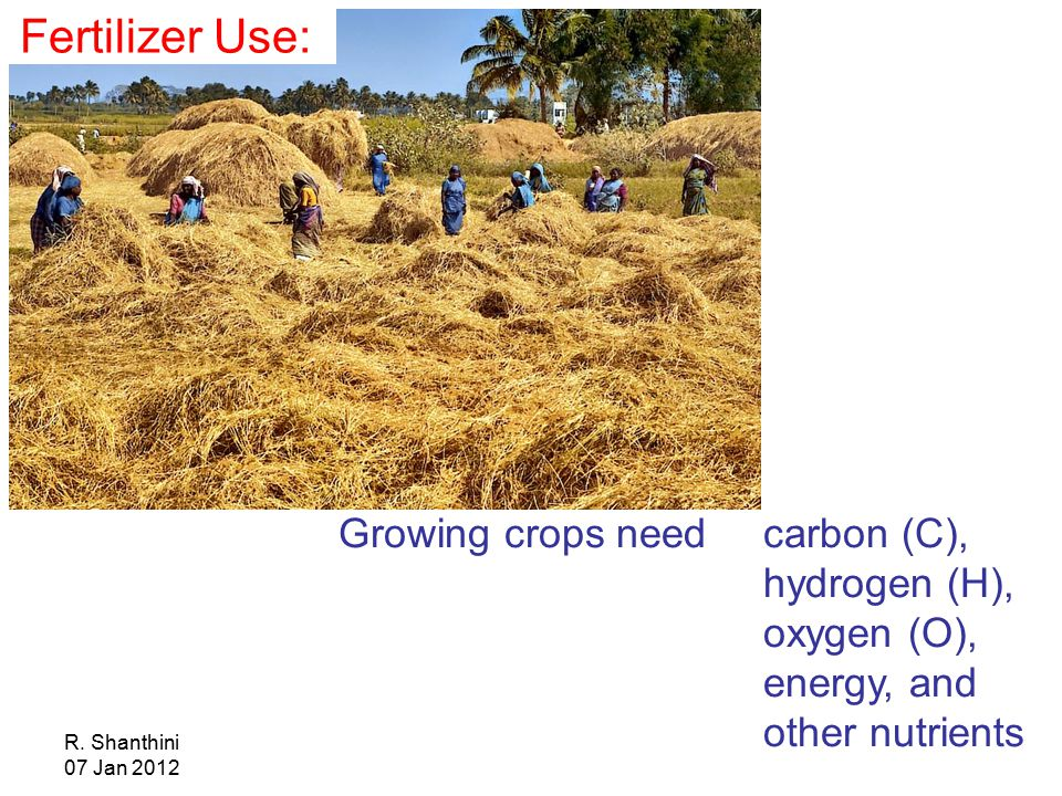 R. Shanthini 07 Jan 2012 Growing crops need carbon (C), hydrogen (H), oxygen (O), energy, and other nutrients Fertilizer Use: