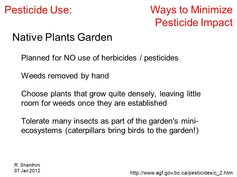 R. Shanthini 07 Jan 2012 http://www.agf.gov.bc.ca/pesticides/c_2.htm Ways to Minimize Pesticide Impact Pesticide Use: Native Plants Garden Planned for