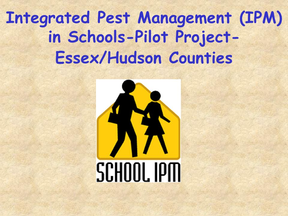 Pest problems can be very severe in the school cafeteria.